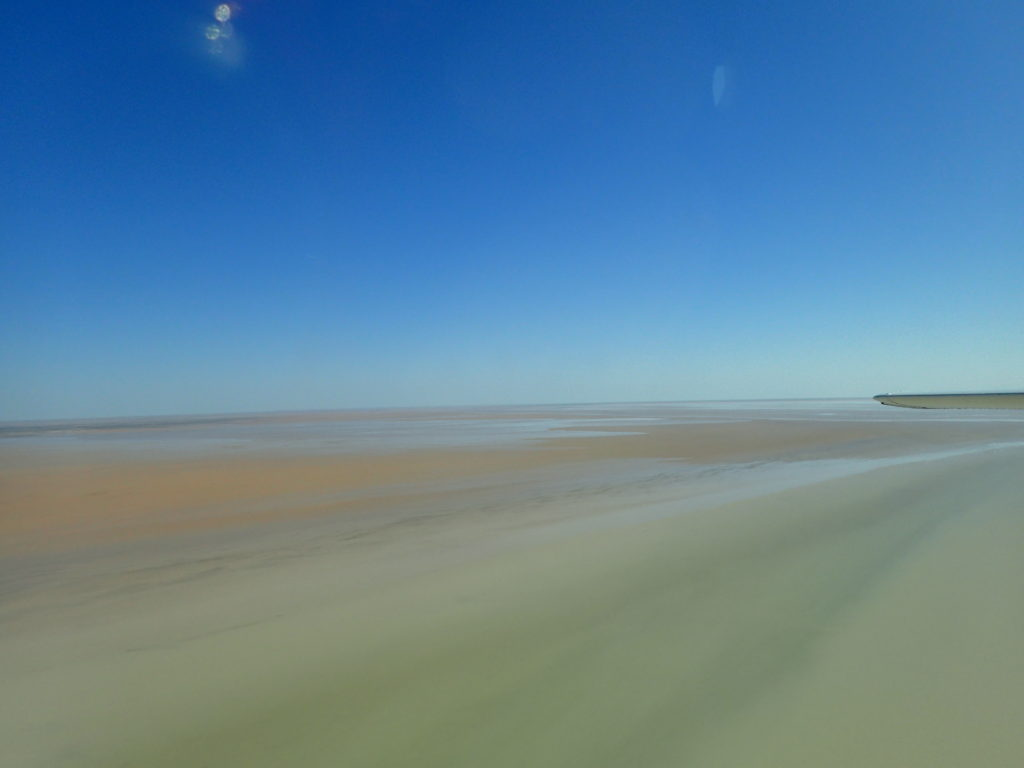 Lake Eyre! So much water, so much lake!
